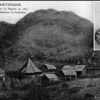 Revisiter le Domaine de La Pagerie
